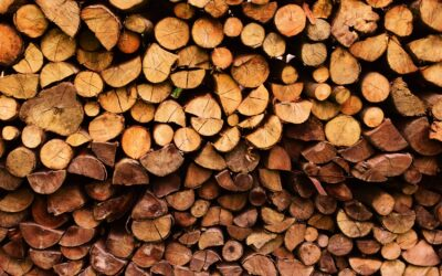 How Home-grown Timber can Help the UK become Carbon Zero by 2050